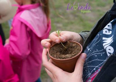 lawendowe-pole-dla-dzieci03