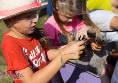 lawendowe-pole-dla-dzieci18