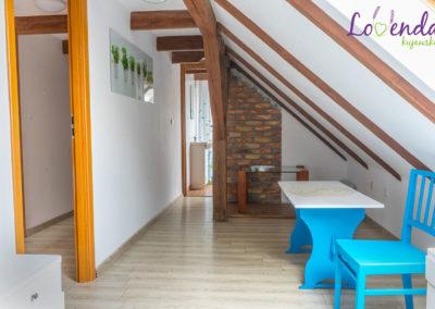 lovenda-kujawska-lawendowe-pole-02