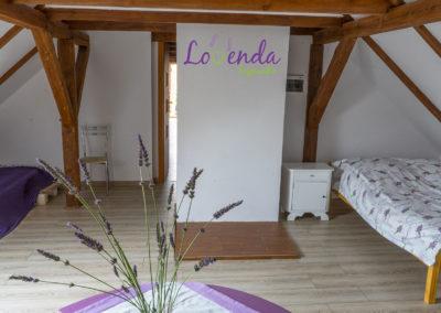 lovenda-kujawska-lawendowe-pole-08