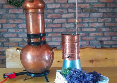 warsztaty destylacja olejku lawendowego